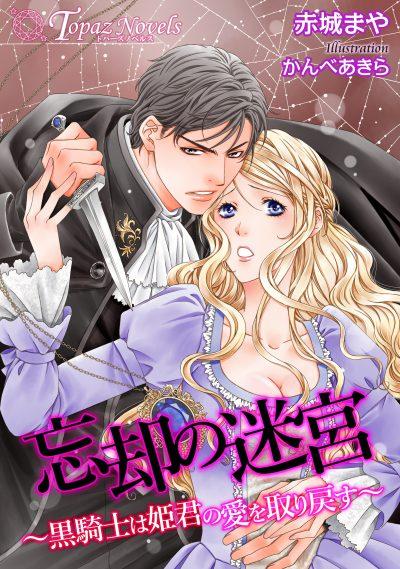 忘却の迷宮~黒騎士は姫君の愛を取り戻す~【書き下ろし・イラスト5枚入り】